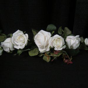 Garland rose wh.2'long